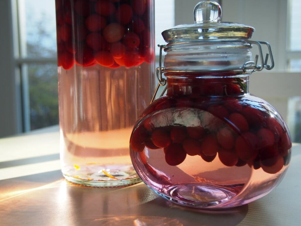 This cranberry gin is a New England take on a British classic, sloe gin- join the experiment to make a great drink for the holidays, tasting notes to follow