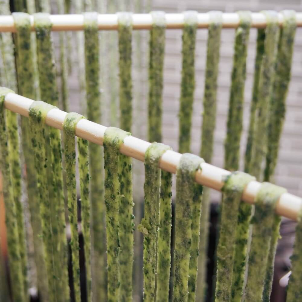 making fresh spinach pasta - on drying rack
