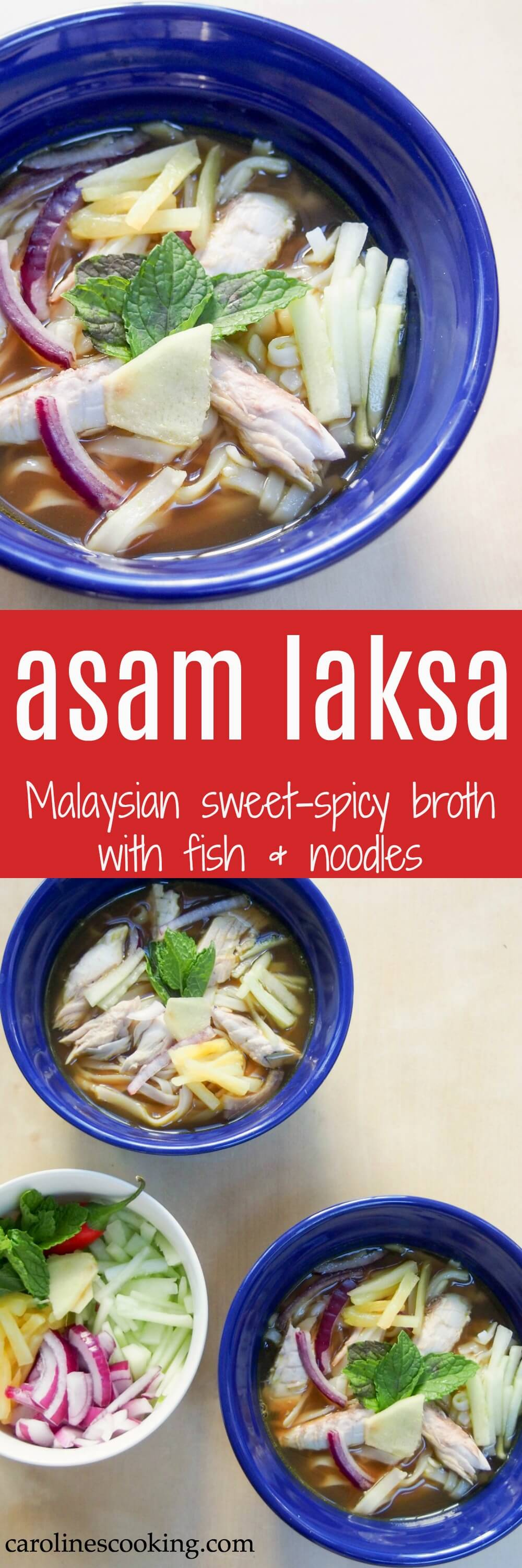 Asam laksa is a deliciously flavorful Asian broth with a fish, tamarind and spicy base, served over rice noodles with cucumber, pineapple and mint garnish. A delicious dinner!
