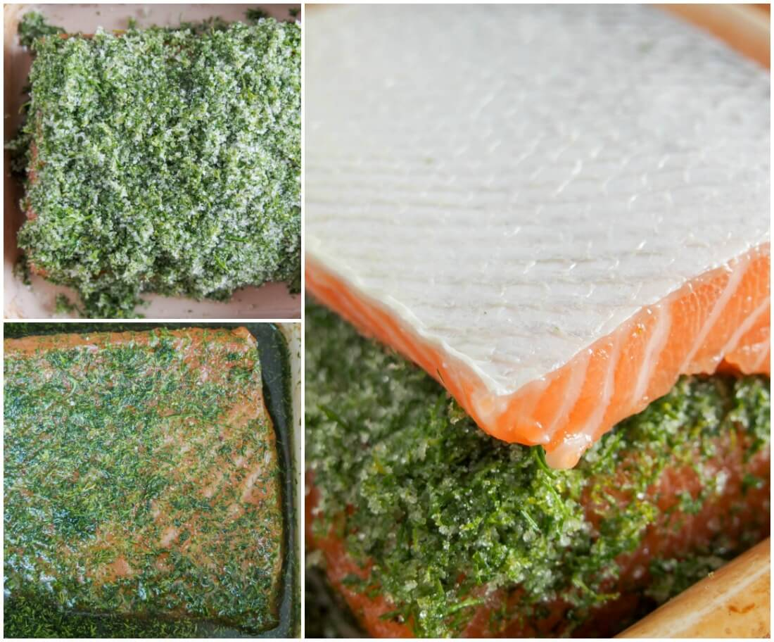 making salmon gravlax