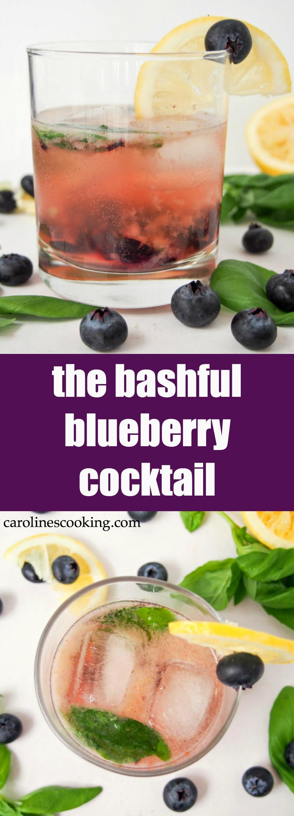 This bashful blueberry cocktail is a delicious mix of blueberries, lemon, vermouth, whiskey and a hint of basil. Topped with soda, it's a refreshing drink perfect for summer sipping. Easy to make & easy to enjoy!