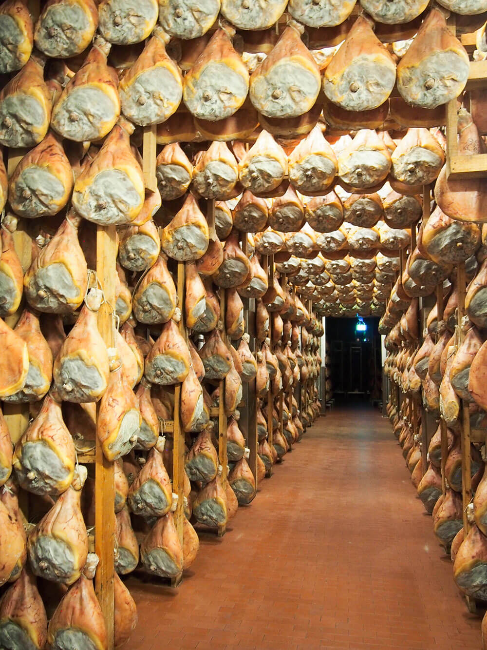 curing room filled with aging prosciutto di Parma