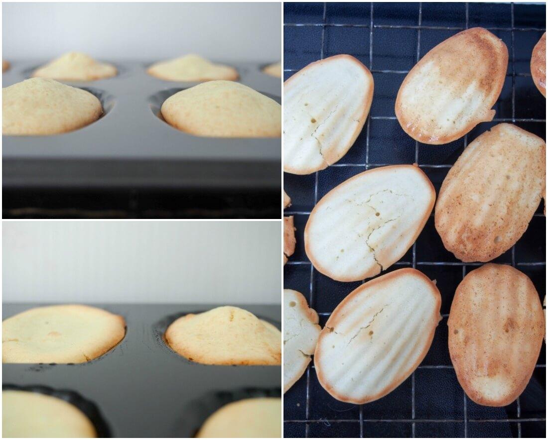 baking powder v none comparison lemon madeleines