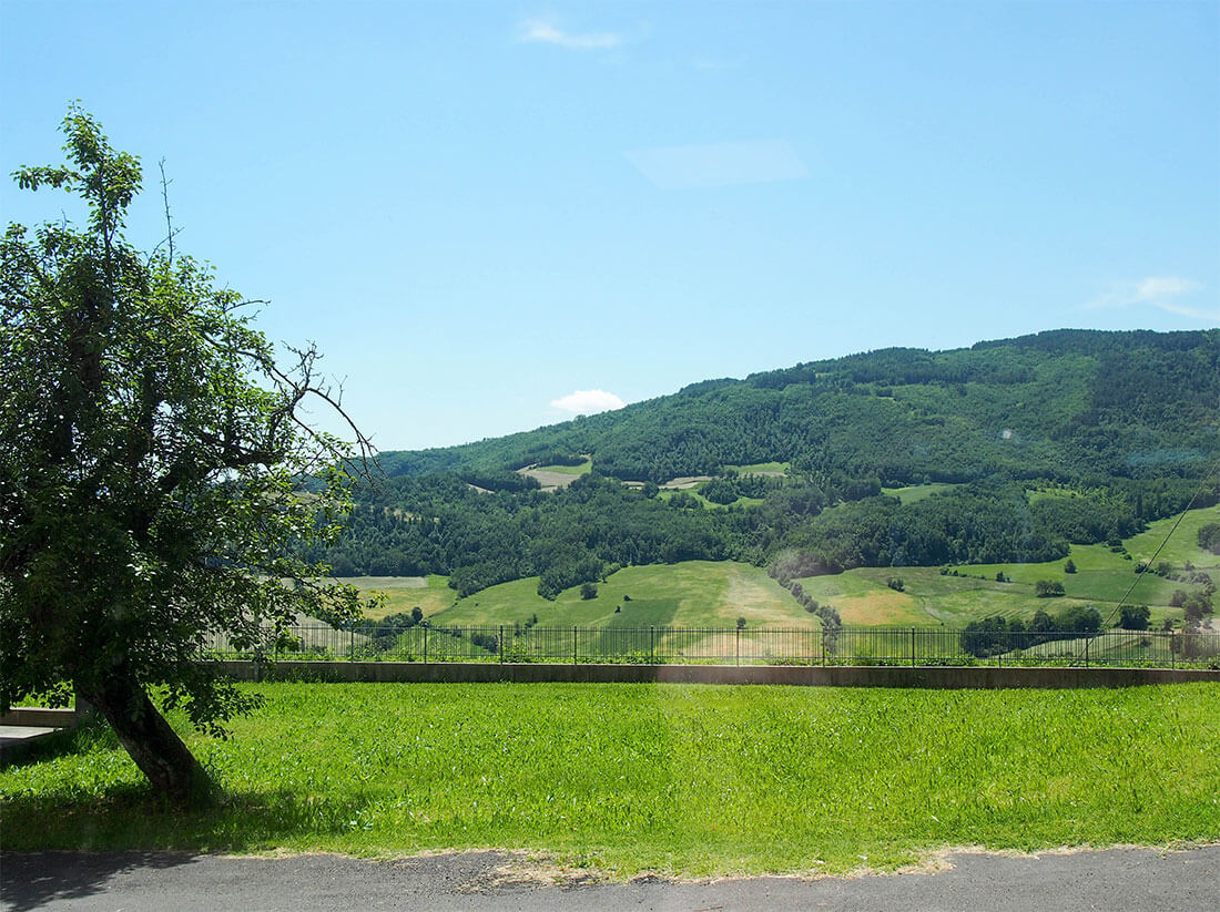 view from prosciutto producer