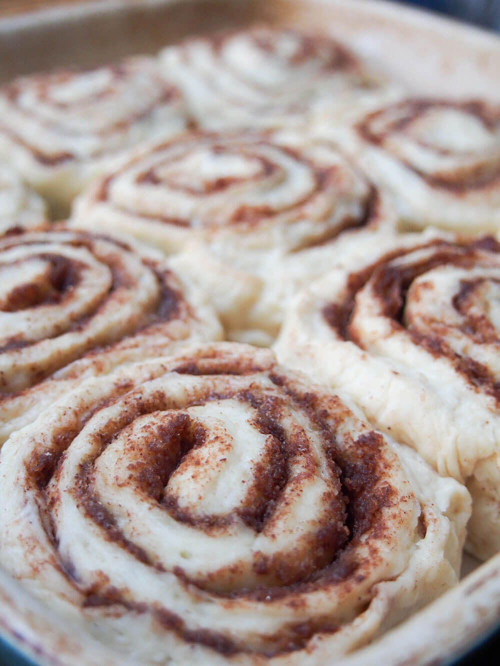 eggnog cinnamon rolls before baking